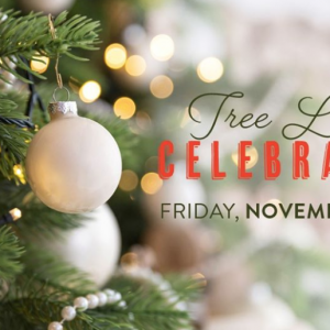 11/22 11th Annual Tree Lighting Celebration at Piedmont Town Center