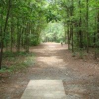 Disc Golf at Reedy Creek Park