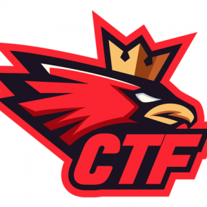 CrownTown Falcons Youth Sports