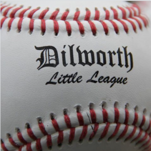 Dilworth Youth Sports Association