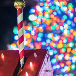 11/29 Annual Christmas Tree Lighting at Town of Mint Hill 2018