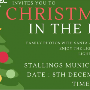 12/08 Christmas in the Park at Stallings Parks and Recreation 2018