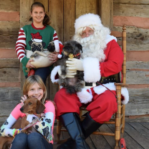 12/01 Candy Cane Hunt & Paws with Claus at Anne Springs Close Greenway 2018