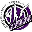 Cabarrus County Gymnastics Birthday Party
